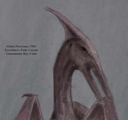 sketch of the head, with long pointed headcrest, of the pterosaur of Cuba